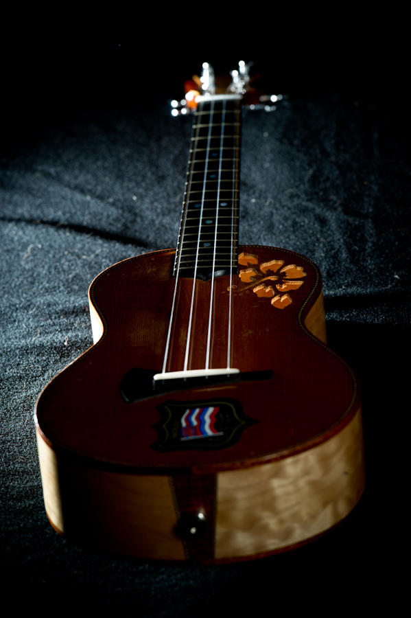 Eddie Vedder's ukulele lights