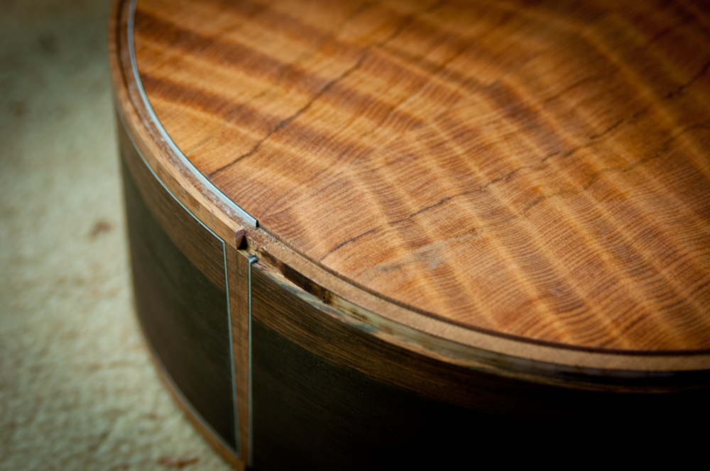 curly-redwood-top