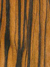 Macassar Ebony for guitars
